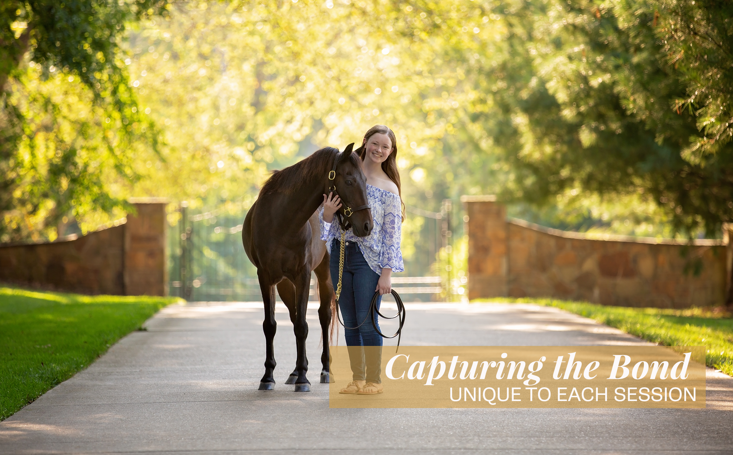 A beautiful outdoor summer scene of a young girl wearing jeans and an off the shoulder shirt holding her hackney pony on a tree lined paved path in a gated drive.